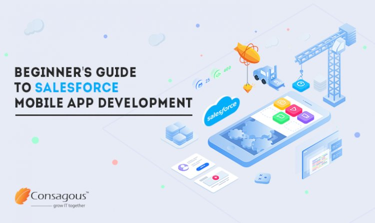 Salesforce Mobile Application Development: A Beginner's Guide