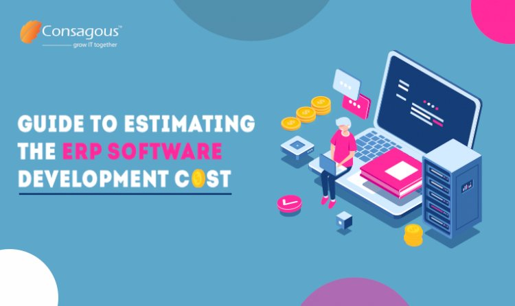 Guide to Estimating the ERP Software Development Cost