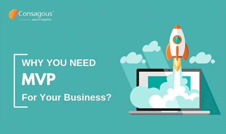 Why You Need an MVP for Your Business?