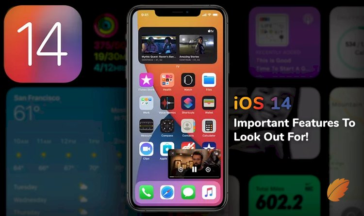 iOS 14 - Important Features to Look Out For!