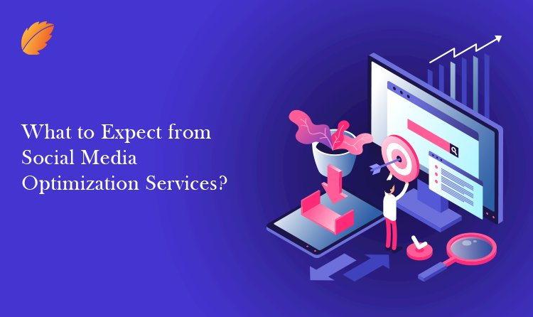 What to Expect from Social Media Optimization Services?
